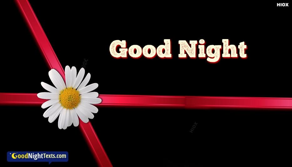 Good Night Cute
