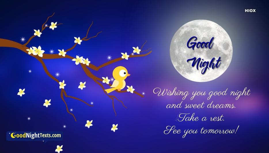 Good Night Friend Messages