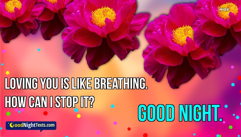 Good Night Message For Crush