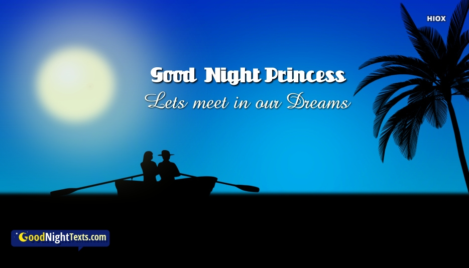 Good Night Texts For Special Friend