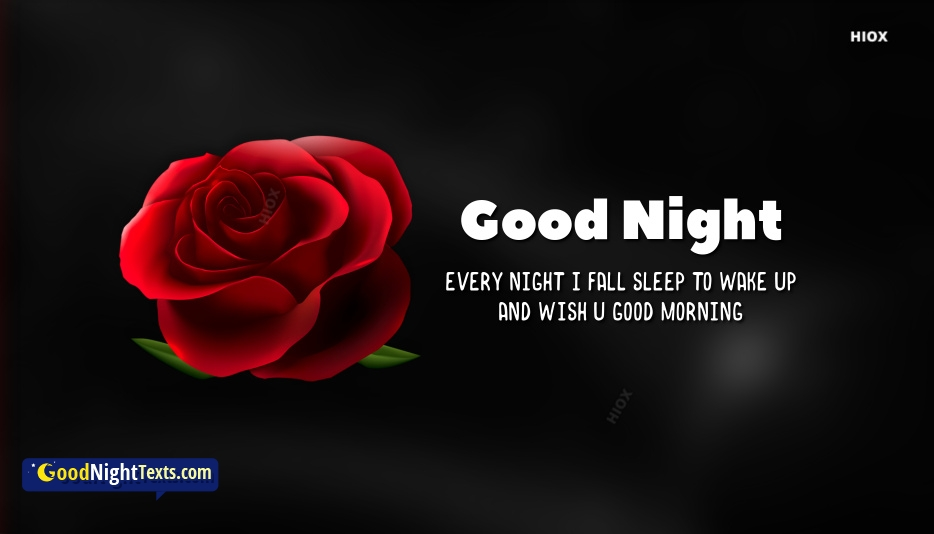 Good Night Texts With Red Rose Images