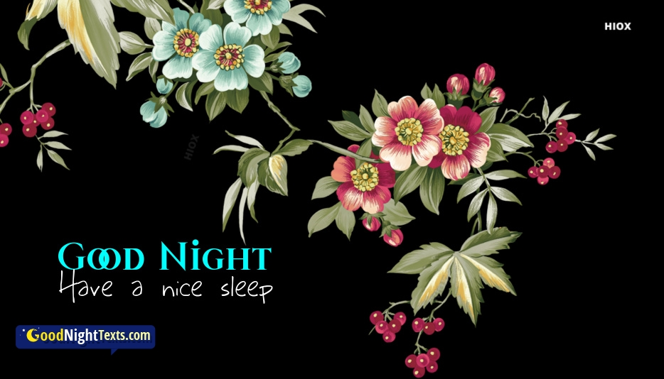 Good Night Messages For Son