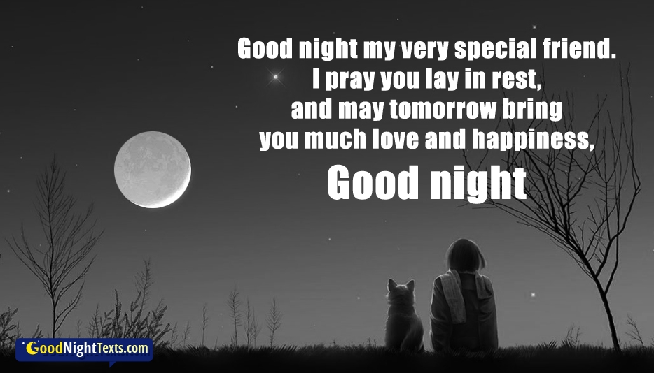 Good Night my very Special Friend. I pray you lay in rest, and may tomorrow bring you much Love and Happiness, Good Night. - Good Night Texts for Friend