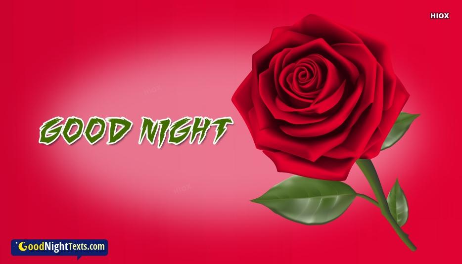 Good Night Rose Image