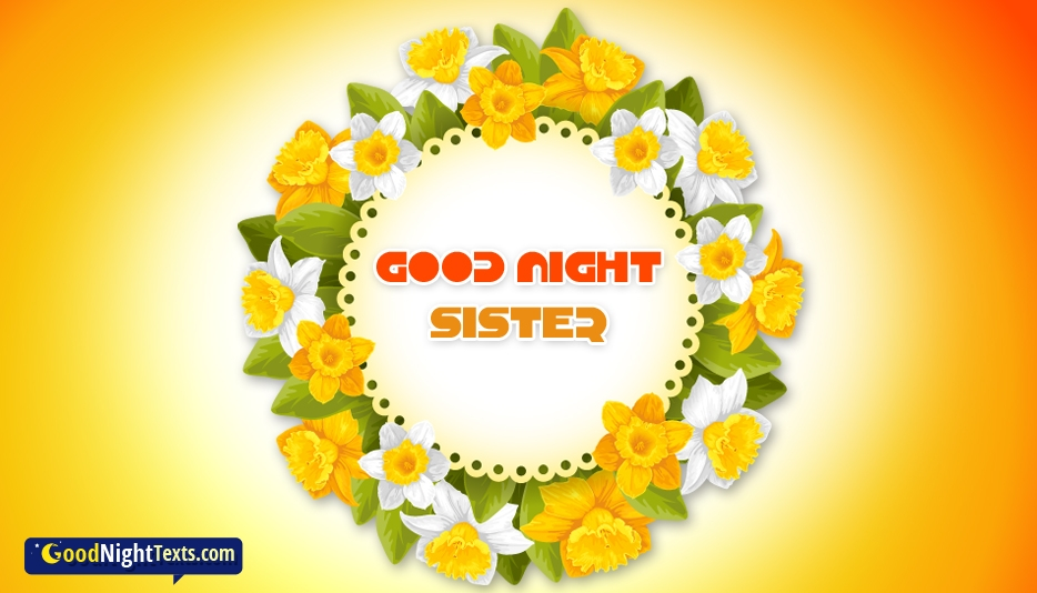 Good Night Text Messages For Sister