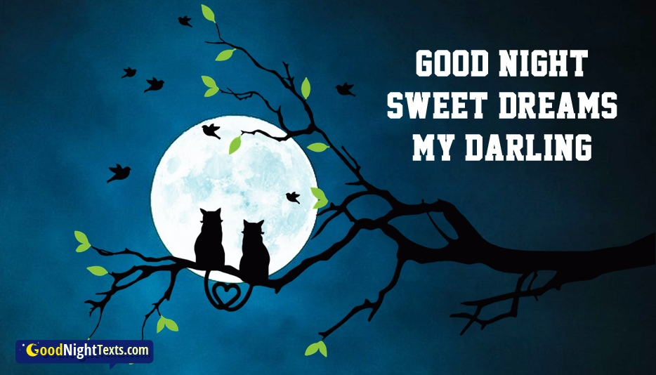 Good Night Sweet Dreams My Darling - Good Night Texts for Darling