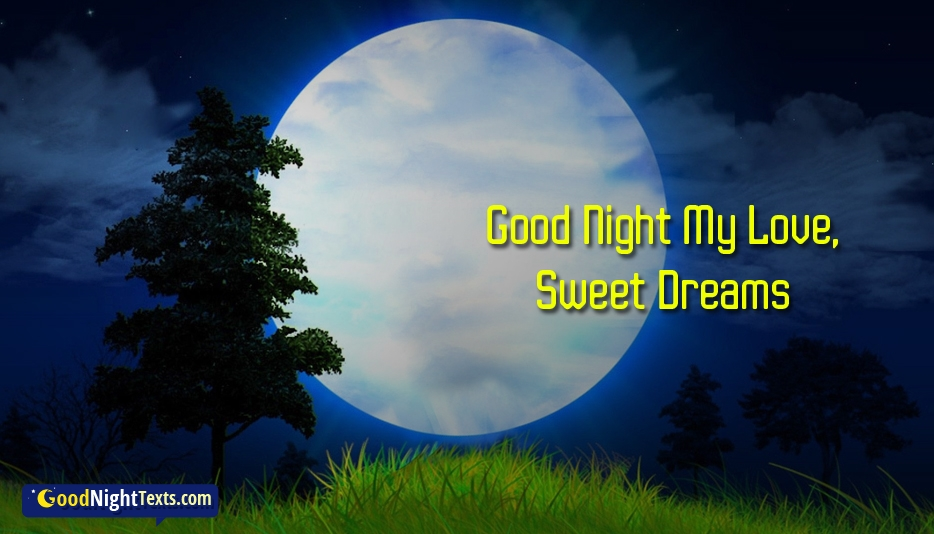 Good Night Text To A Girl You Love Good Night My Love Sweet