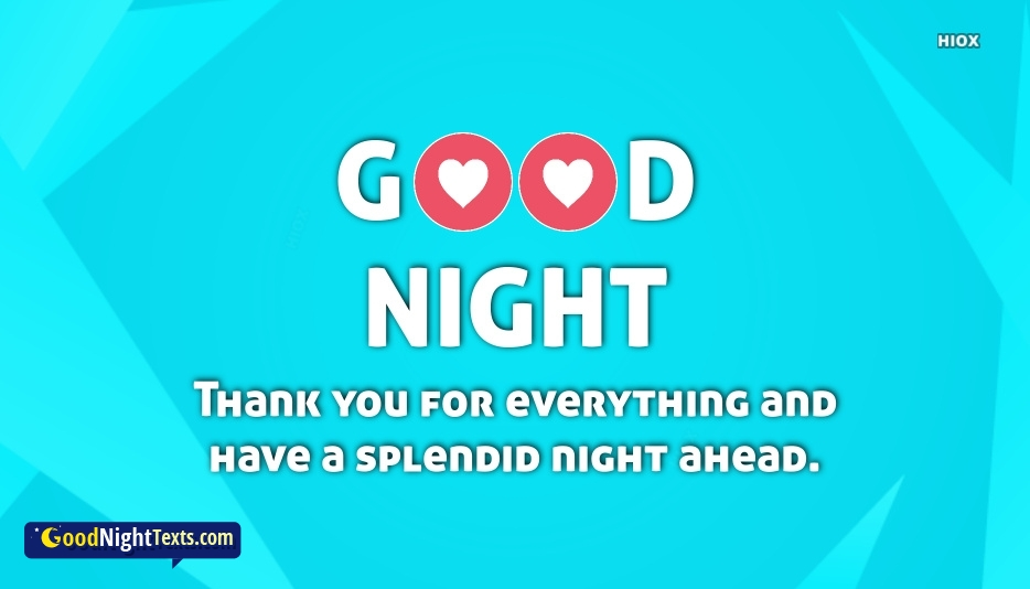 Good Night With Thank You For Everything Message