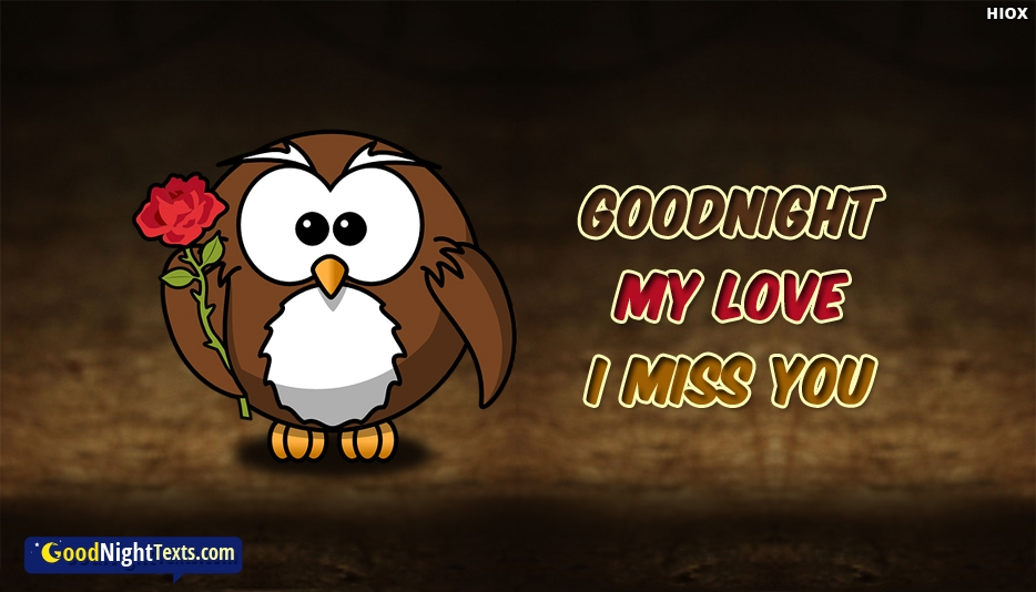 Goodnight My Love I Miss You - Good Night Miss You Quotes