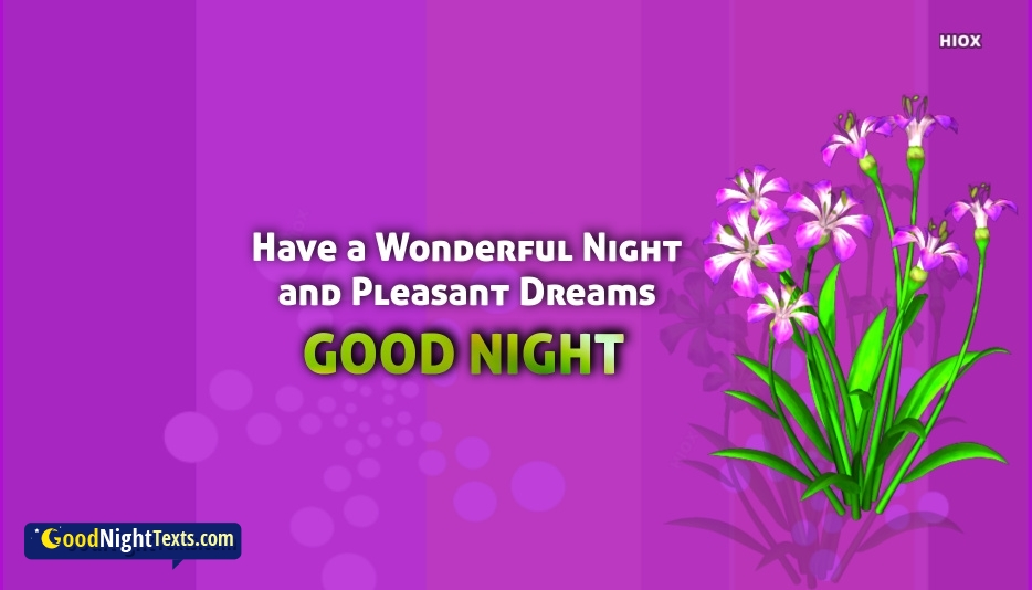 Have A Wonderful Night and Pleasant Dreams Sayings