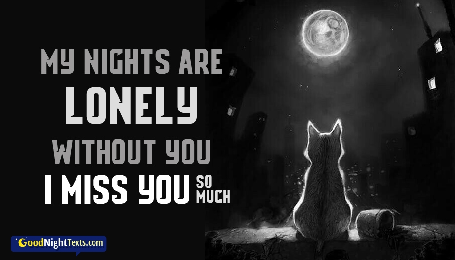 My Nights Are Lonely Without You I Miss You So Much Good Night