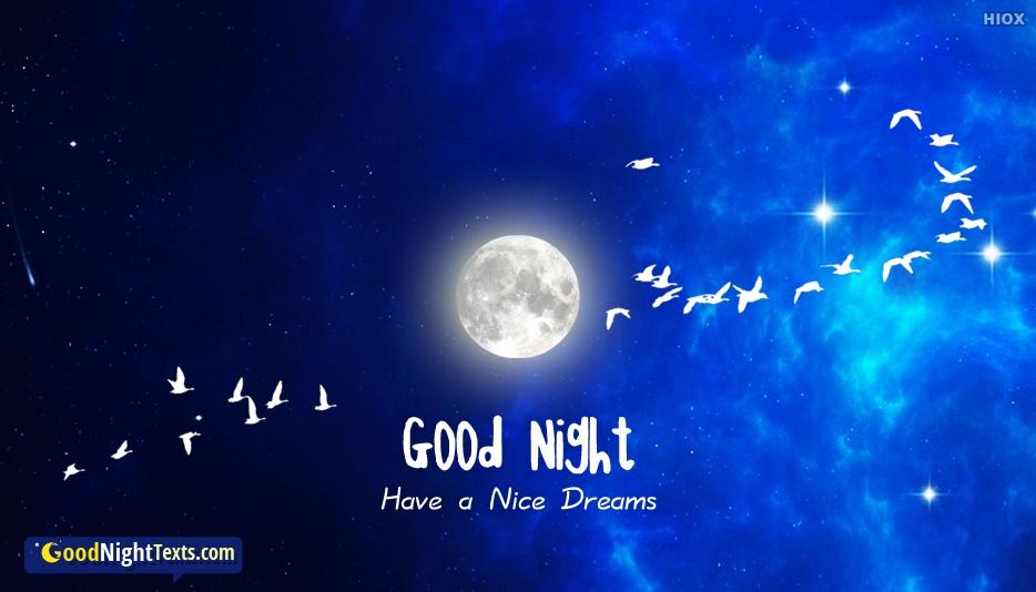 Nice Good Night Text