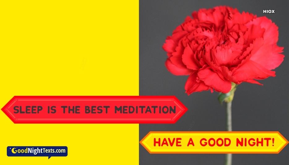 Sleep is The Best Meditation. Good Night
