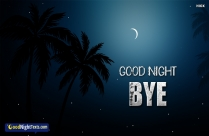 Good Night Bye