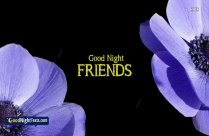 Good Night Text For A Friend