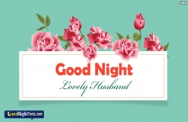 Good Night Texts for Life Partner