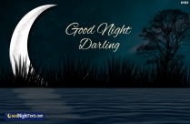 Good Night My Sweet Darling