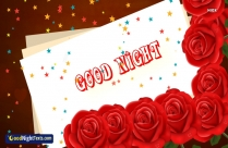 Good Night Red Rose