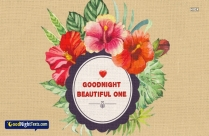 Good Night With Thank You