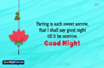 Loving Good Night Wishes