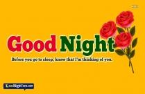 Cute Good Night Text